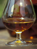Armagnac is Made From White Grapes  Aquitania  France