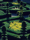 Garden at Villandry Chateau  Loire  Valley  France