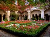 Cloisters at St-Paul-de-Mausole Monastery  St Remy de Provence  France