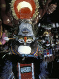 Male Dancer of the Mendi Tribe  Mt Hagen  Papua New Guinea