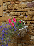 Wicker Basket of Flowers on Limestone Building  Burgundy  France