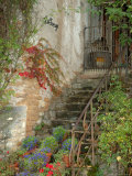 Steps to La Forge Home  Burgundy  France