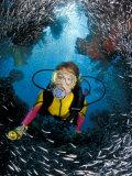 Minnow Caves and Scuba Diver  Key Largo  Florida  USA