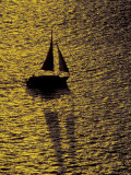 Sailing at Sunset  Ft Myers  Florida  USA