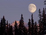 Moonrise in Early Winter  Chugach Range  Alaska  USA