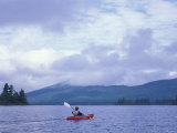 Kayaking on Moose River Bow Loop  Northern Forest  Maine  USA
