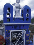 Colorful Cemetery with Statue and Family Tomb  Yucatan  Mexico
