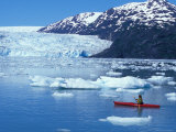 Kayakers and Icebergs in Nassau Fjord  Chenega Glacier  Prince William Sound  Alaska  USA