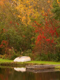 Boat at Pond in Rural New England  Maine  USA