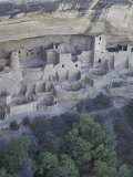 Anasazi Cliff Dwelling  Cliff Palace  Mesa Verde National Park  Colorado  USA