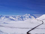 Mt Denali After First Snow Storm  Alaska  USA