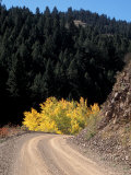 Lemhi Pass  Continental Divide  Lewis and Clark Trail  Idaho  USA