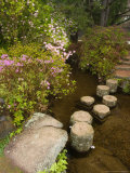 Asticou Azalea Gardens in Northeast Harbor  Mt Desert Island  Maine  USA