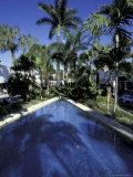 Lincoln Road  South Beach  Miami  Florida  USA