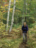 Hiking on the Appalachian Trail  Northern Forest  Maine  USA