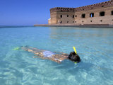 Snorkeling at Fort Jefferson  Garden Key  Dry Tortugas  Florida  USA