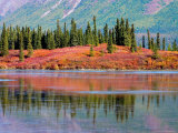 Lake in Autumn along the Denali Highway  Alaska  USA