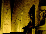 Hieroglyphs and Statues of Luxor Temple at Night  Luxor  Egypt