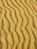 Sand Ripples  Queensland  Australia