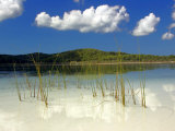 White Sands and Lake Birrabeen  Fraser Island  Queensland  Australia