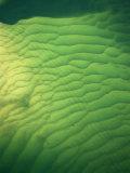 Underwater sand patterns  The Broadwater  Gold Coast  Australia