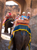Retired Tourists on Elephant Rides at Amber Fort  Rajasthan  Jaipur  India