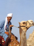 Camel and Rider at the Great Pyramids of Giza  Egypt