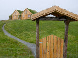 Modern Versions of Traditional Sod Houses  Iceland