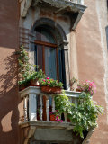 Flowers on Villa Balcony  Venice  Italy