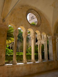 Romanesque Cloister  Franciscan Monastery  Dubrovnik  Croatia