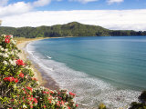 Hicks Bay  Eastland  New Zealand