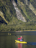 Sea Kayak  Milford Sound  Fjordland National Park  South Island  New Zealand