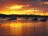 Sunset  Russell  Bay of Islands  Northland  New Zealand