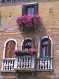 Architecture and Design of Venice  Italy