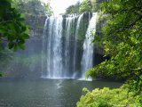 Rainbow Falls  Kerikeri  Northland  New Zealand