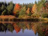 Maine Pond with Reflection and Chair  USA