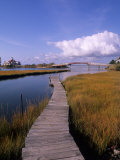 Fogers Island Walkway  Ocean City  Maryland  USA