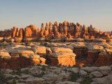 Rock Spires and Grabens at Chesler Park  The Needles  Canyonlands National Park  Utah  USA
