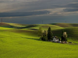 Farm near Colfax at Dusk  Palouse  Washington  USA