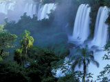 Iguacu National Park  Parana State  Iguacu Falls  Brazil