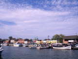 Harbor and Ships  Annapolis  Maryland  USA