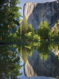 El Capitan reflected in Merced River Yosemite National Park  CA