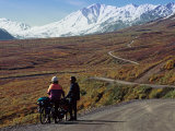 Two Bicyclists on the Park Road in Denali National Park  Alaska  USA