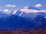 Mt Denali and Muldrow Glacier Covered with Veneer of Vegetation  Alaska  USA