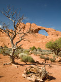 Skyline Arch  Arches National Park  Utah  USA