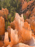 Hoodoos in Bryce Canyon from Inspiration Point  Bryce Canyon National Park  Utah  USA