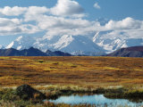 Tundra West of the Eieson Visitors Center  Pond with Beaver House  Mt Denali  Alaska  USA