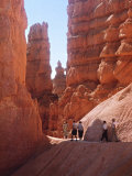 Tourists Walking in Bryce Canyon National Park  Utah  USA