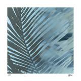 Sunset Palms III