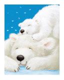 Fluffy Bears II